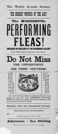 The Human Flea: Circus Performer and Watchmaker's Helper