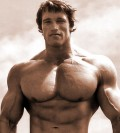 Bodybuilding: A Guide to Nutrition and Meal Planning