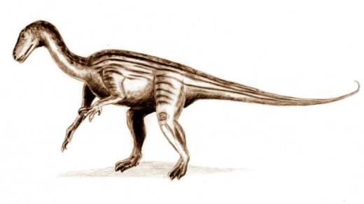 Thecodontosaurus Dinosaur By Assumed Aitjpr Artjir Weas;eu GNC 1.2