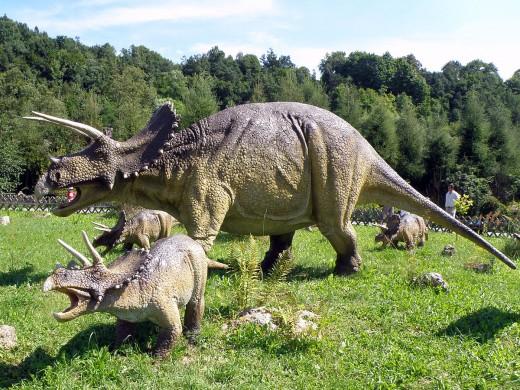 Triceratops Dinosaur By Alina Zienowicz CC BY-SA 3.0