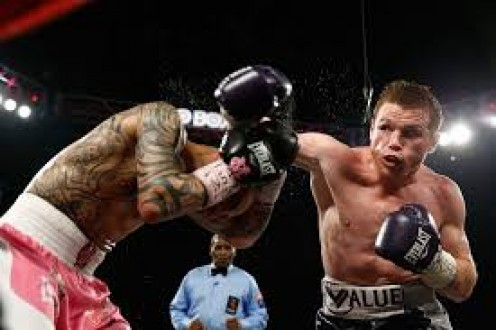 Canelo Alvarez won a hard fought decision over Miguel Cotto.