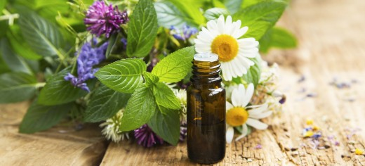 Traditional Alternative Medicine
