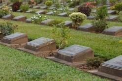Burial verus Cremation