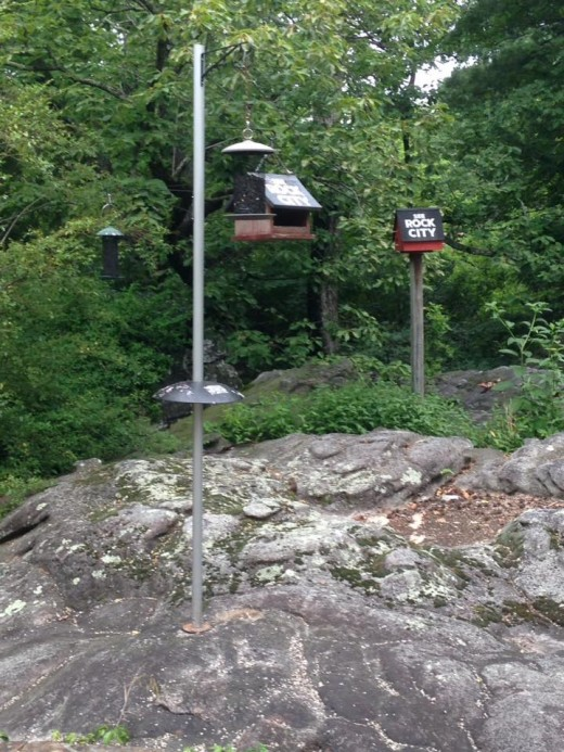 Birdhouses at Rock City mimic the famous barns that advertise 'See Rock City.'