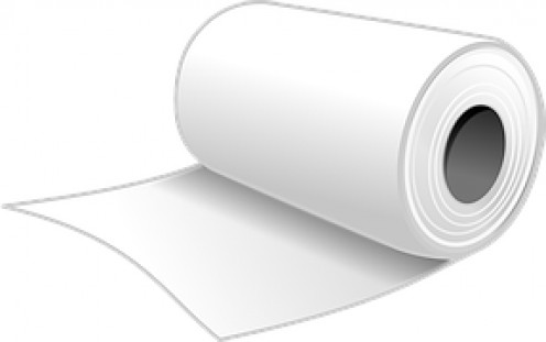 See how this roll of bathroom tissue looks without a tube?
