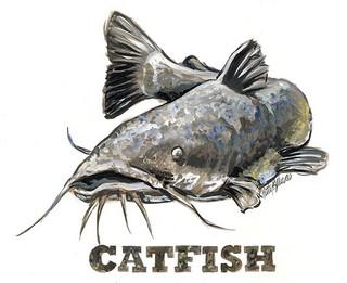 catfishing america hubpages