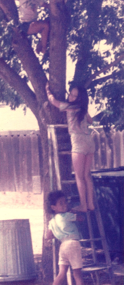 Sisters climbing a tree together.