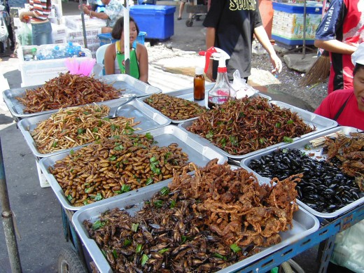 An insect food stall in Bangkok.