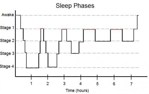 Sleep Phases