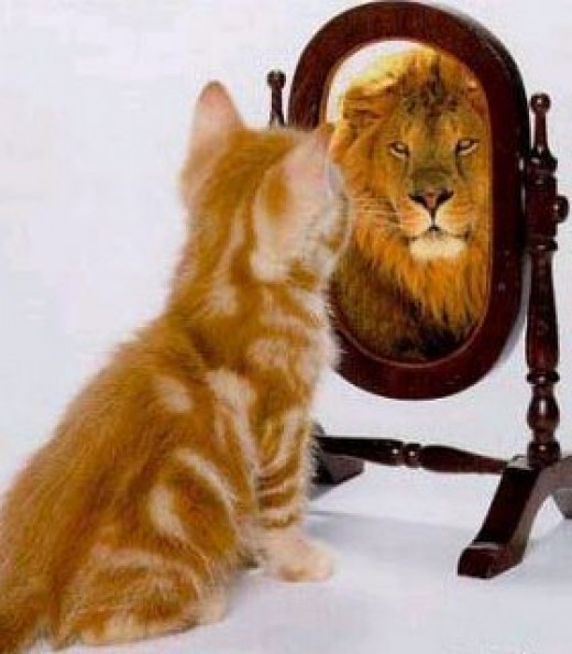 The Lion Inside Me