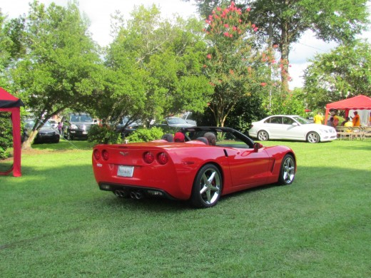 Our cousin George, came with his son Deon, in his little red corvette to the cookout in the park.