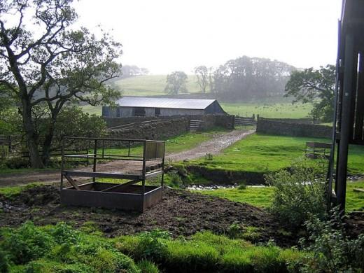 Barn and Sheepfold, Snowhope Close Farm.