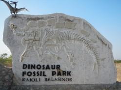 The World's Third largest Dinosaur Eggs Hatchery
