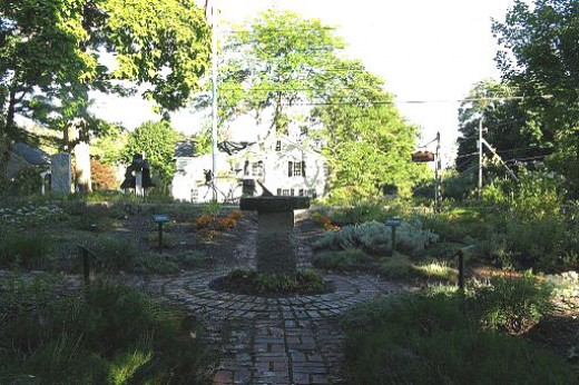 An example of a colonial herb garden in Massachusetts.