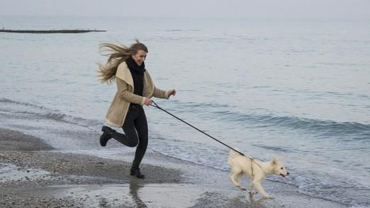 Walking your favorite pet.
