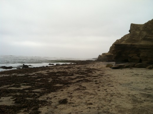 Just a beach shot.