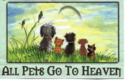 Do Animals Need Spiritual Help?