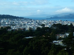 View from de Young Museum Tower, San Francisco