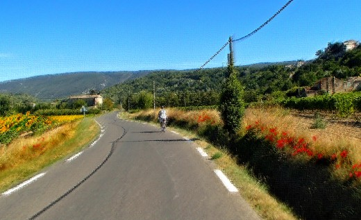 Provence countryside and biker - homage to Claude Monet.