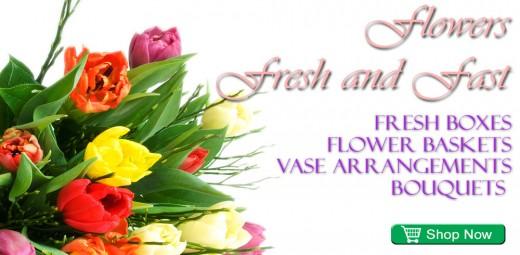 Monash Flowershop