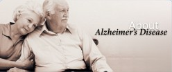 Cure to Alzheimer's disease: A research revealed a promising new drug