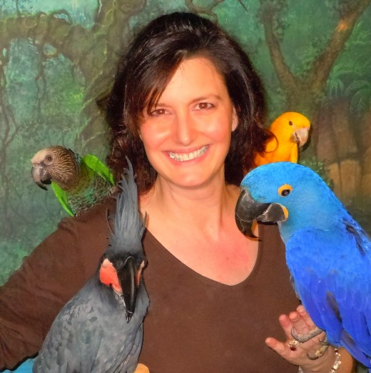 Northeast AFA chair Concetta Ferragamo with some of the rare parrots that may be on hand for the 2016 AFA conference. - Photo by George Sommers