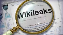 The Significance of Wikileaks