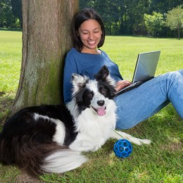 Stay in charge of your own pet business website