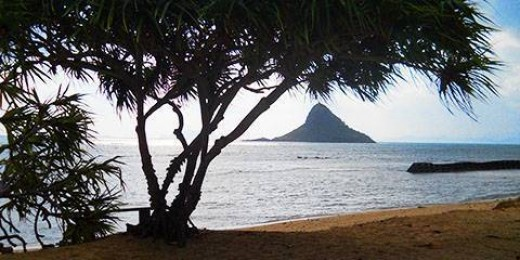Kualoa Beach Campground B has a full view of Chinaman's Hat, a small offshore islet traditionally known as Mokoli'i Island.
