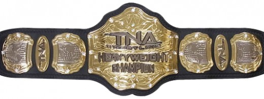 The TNA World Heavyweight Championship, which will be at the hands of Eli Drake in 2017 or 2018.