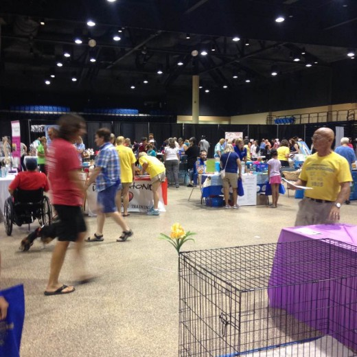 Crowd arrived early to support adoption of deserving pets