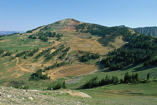 Mountain top removal scars and damages the entire mountain and ecosystem.