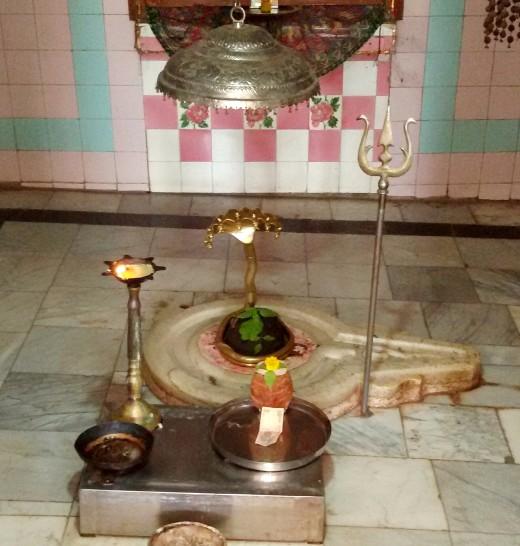 The Shayambhu (Self-manifest) Lingam of Bharbhuteswar/Bhareswar Shiva