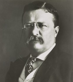 Teddy Roosevelt In Historical Sci-Fi  Novels