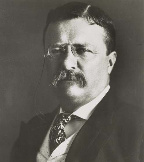Theodore Roosevelt was involved in law enforcement in NYC before he became President.
