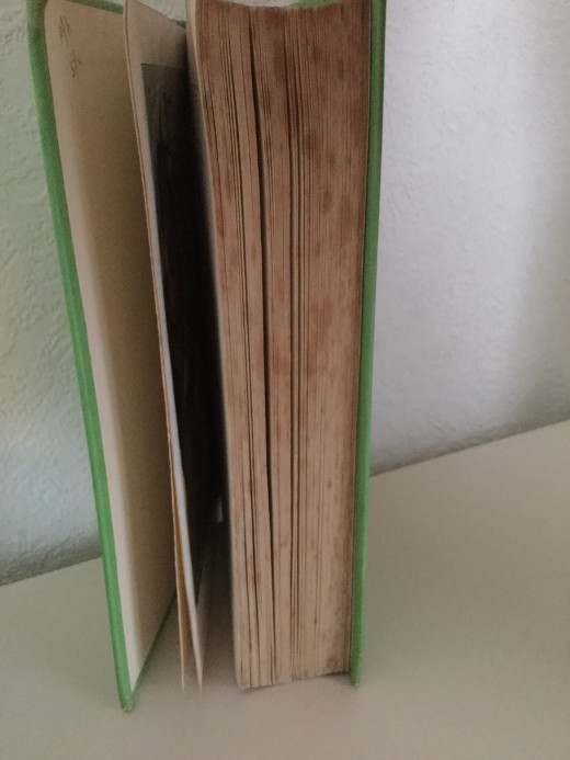A much read book from childhood, now damaged due to poor storage conditions