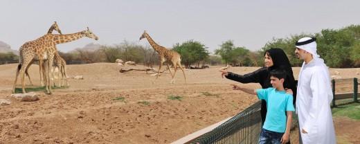 Al Ain Zoo Abu Dhabi