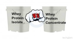 Whey Protein: Isolate vs. Concentrate