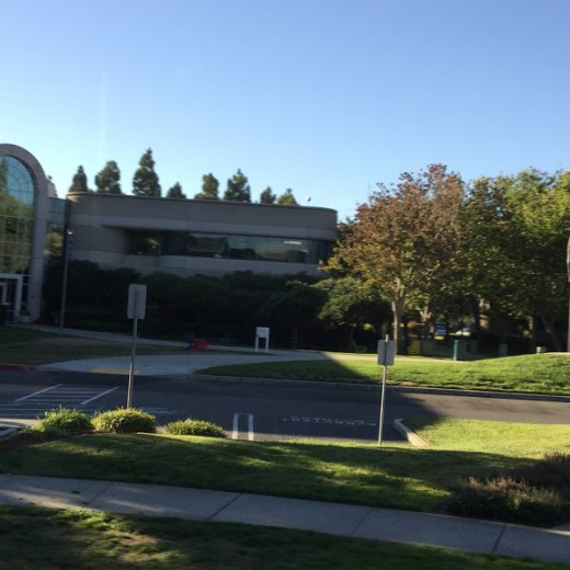Views of Google buildings in Mountain View