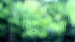 Window Pain No tears