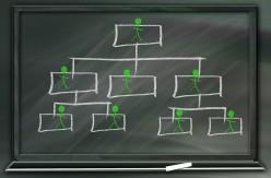 The Social Hierarchy...