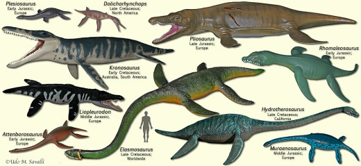 Triassic Sea Life