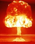 Essential Facts for Nuclear Survival