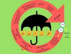 How Agile Methodology Enables Offshore Software Development