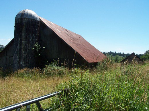 """""""...we saw an old sagging deserted barn with a beat up rusty grain silo."""""""