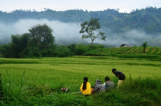 Children play in the rice fields of Asia. Photo by taufik_81. CC0 Public Domain.