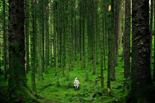 A person walking in the forest. Photo by Unsplash. CC0 Public Domain.