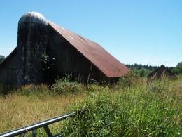 The farmland.