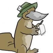 mqjeffrey profile image