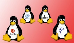 Need to Know Facts: Linux